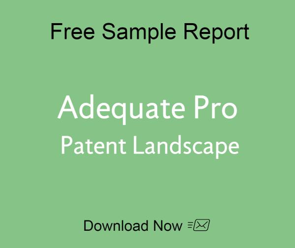 sample-adequate-patent-landscape (1)