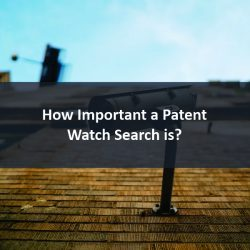 Patent Watch Search