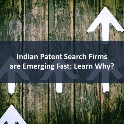 Indian Patent Search Firms