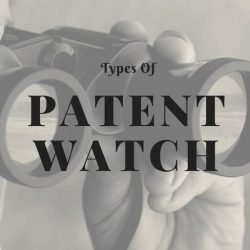 Patent Watch Types